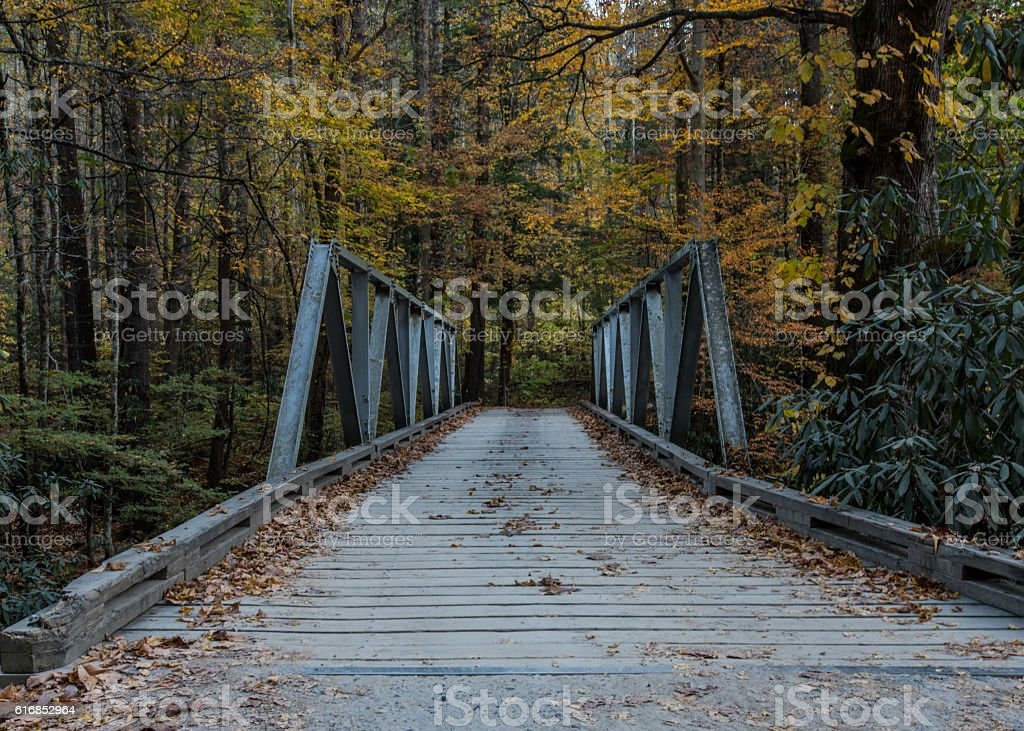 Entering One Lane Bridge stock photo