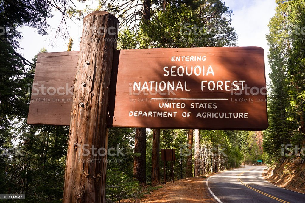Entering Sequoia National Forest Road Sign California Parks stock photo