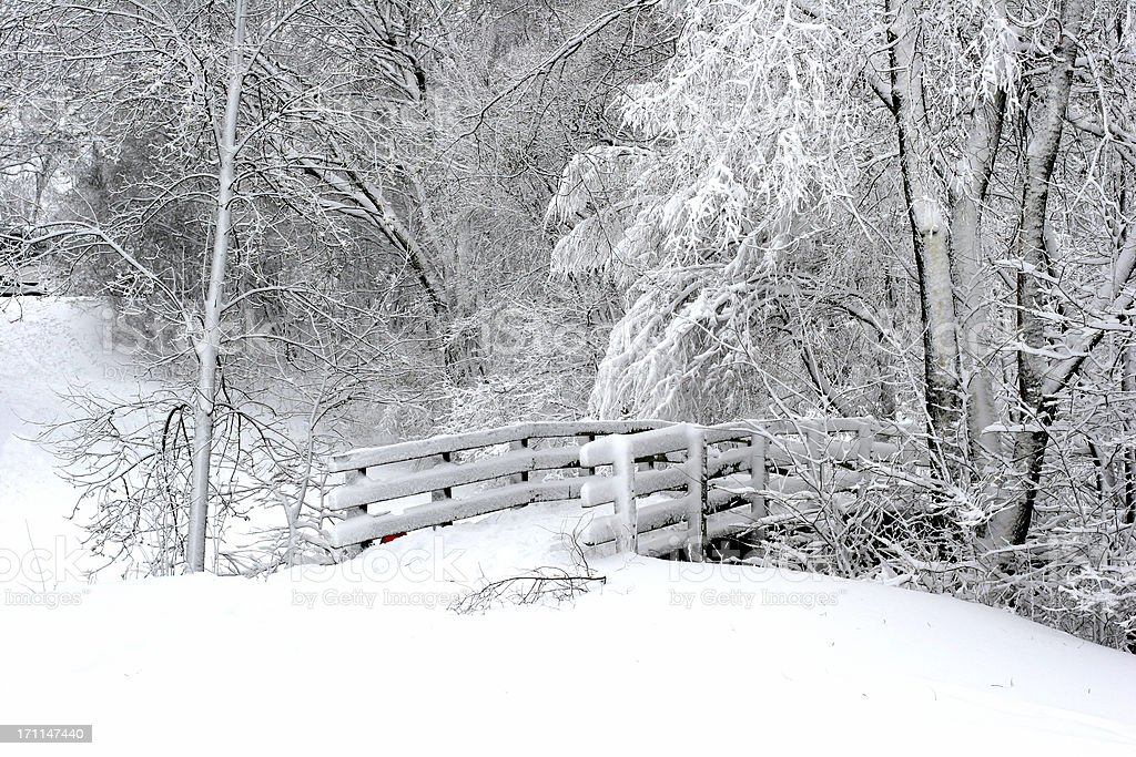 Entering Winter Wonderland royalty-free stock photo
