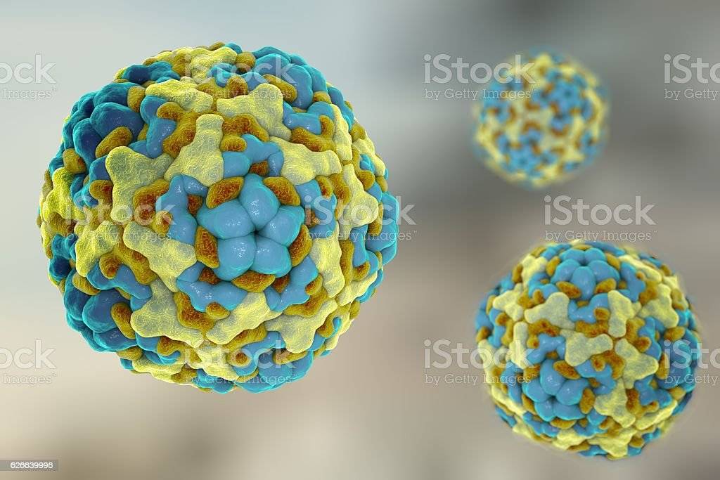Enterovirus D68 which causes respiratory infections in children vector art illustration