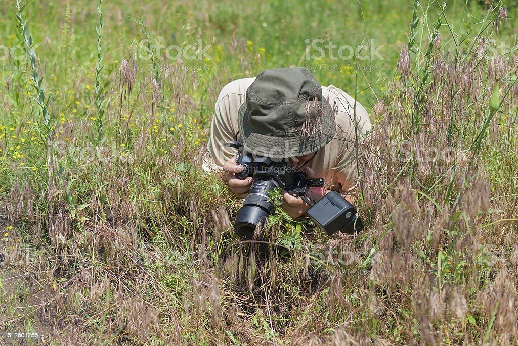 Enthusiastic mature photographer taking a macro photo stock photo