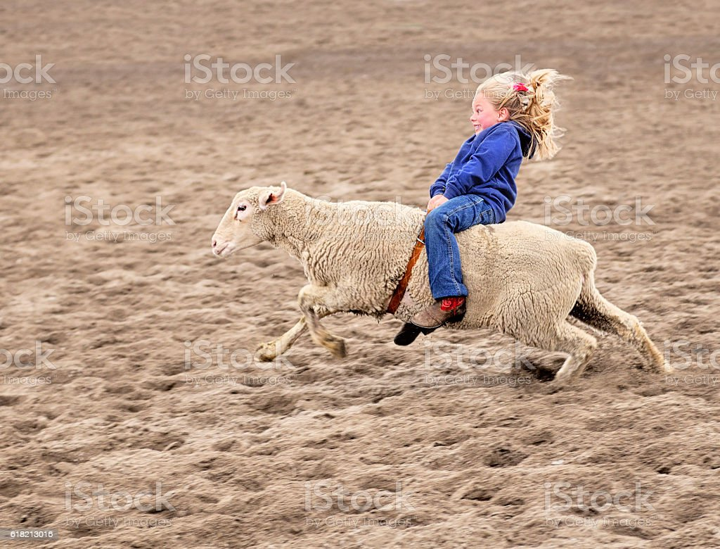 Enthusiastic Mutton Bustin Rodeoing Little Girl stock photo