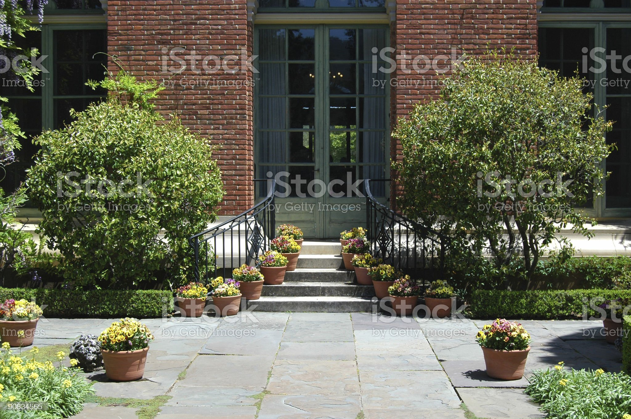 entrance door flanked by potted pansies royalty-free stock photo