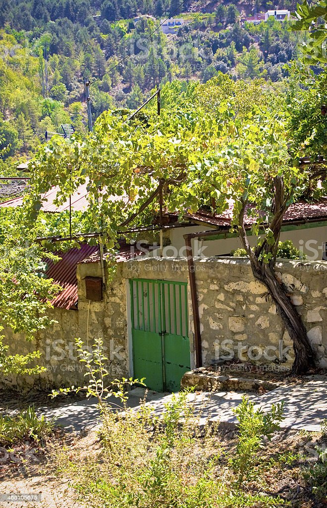 Entrance to house with vineyard. Mountain Village Pedoulas, Cyprus stock photo