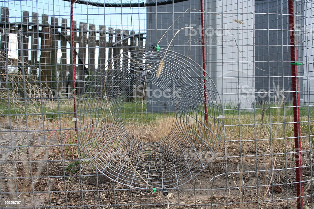 entrance to magpie trap on farm stock photo