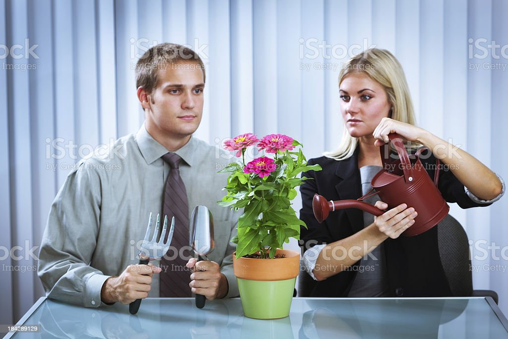 Entrepreneur Team Carefully Cultivating and Growing their Business royalty-free stock photo