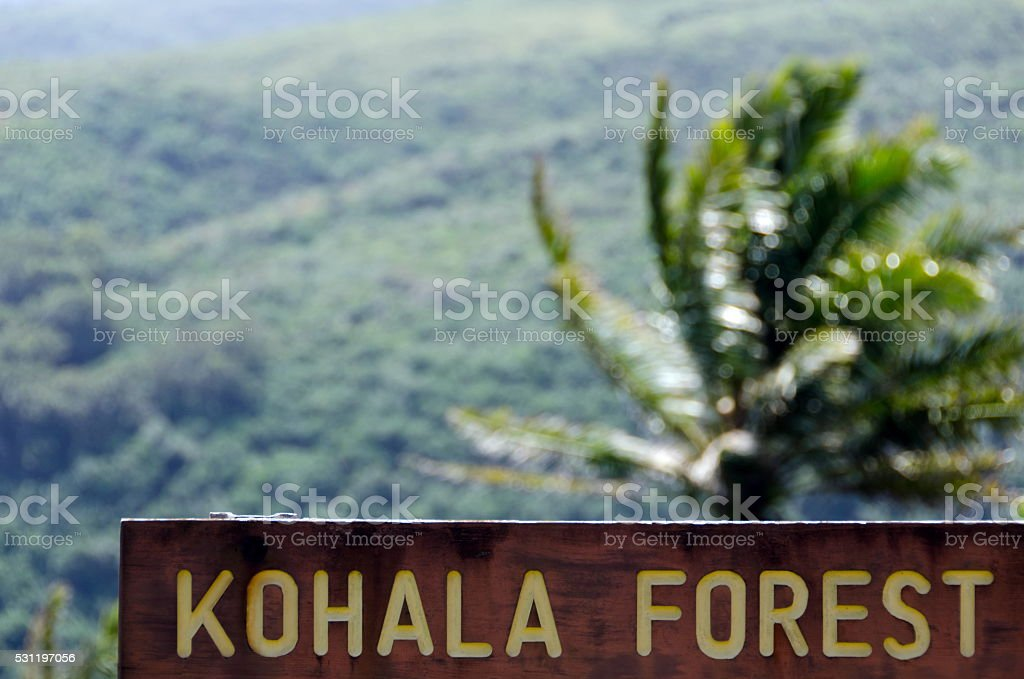 Entry to Kohala Forest reserve near Pololu valley stock photo