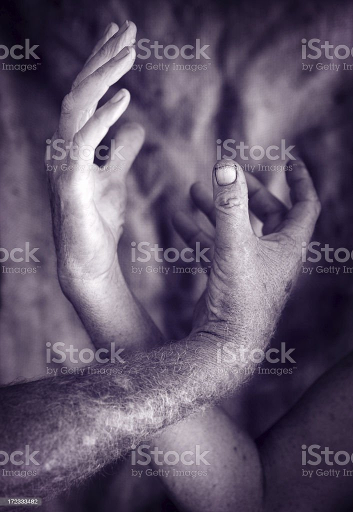 Entwined royalty-free stock photo