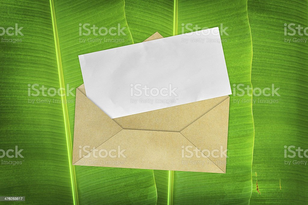 Envelope with blank paper on banana leaf background royalty-free stock photo