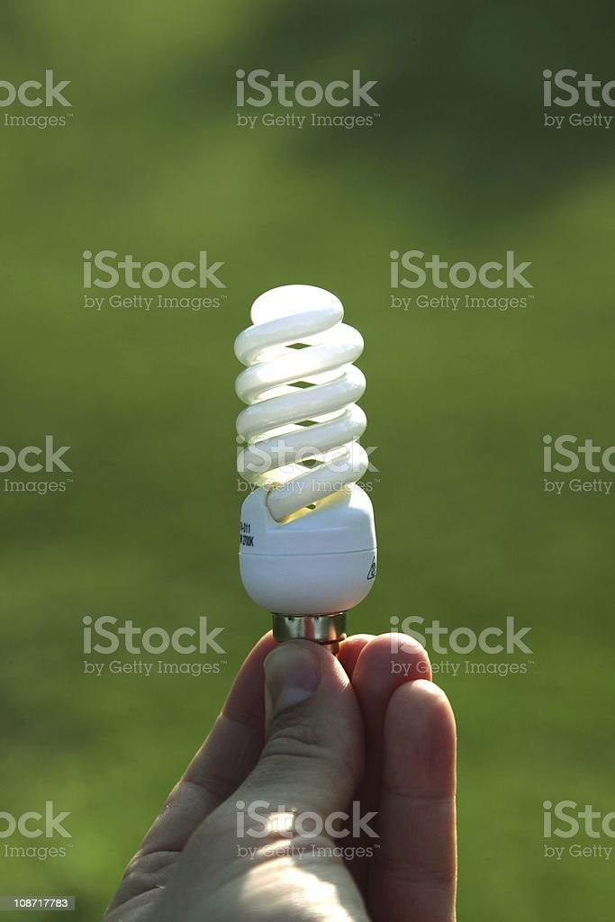 Enviromentaly friendly light bulb stock photo