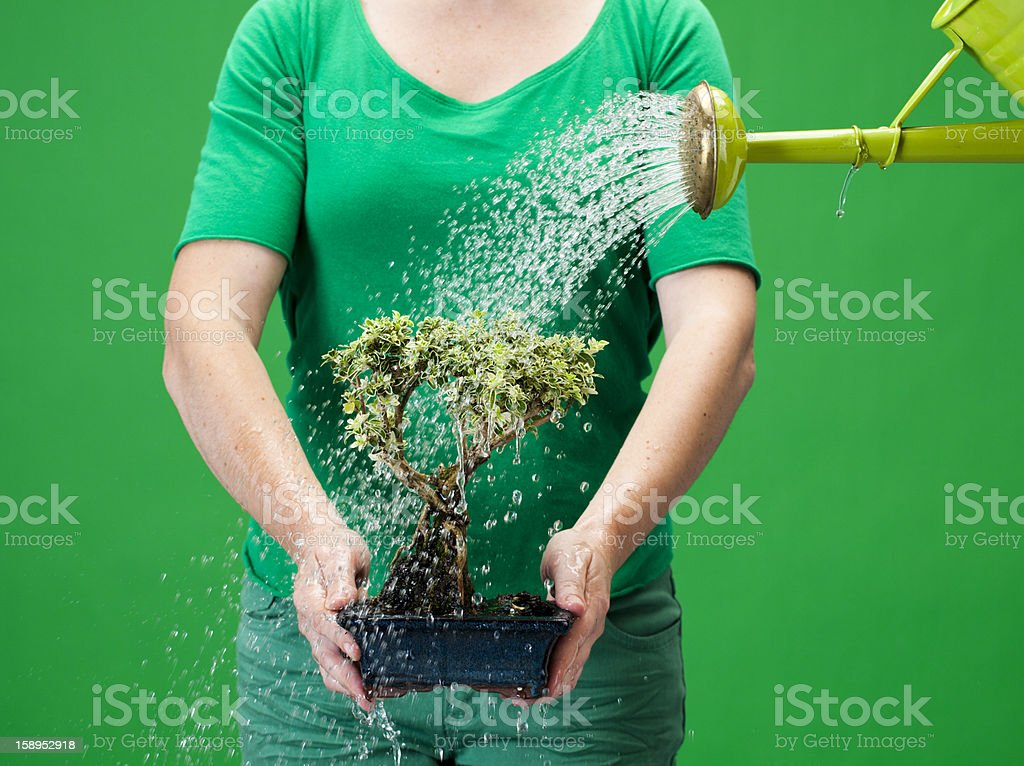 Environment care stock photo