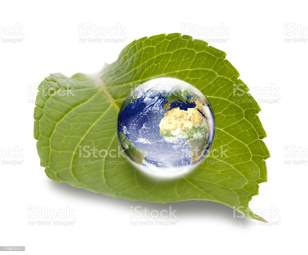 Environment concept: world globe Europe oriented on green leaf royalty-free stock photo