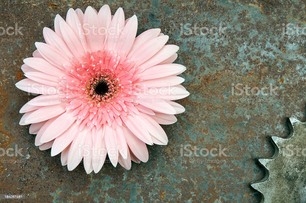 Environment Friendly Industry royalty-free stock photo