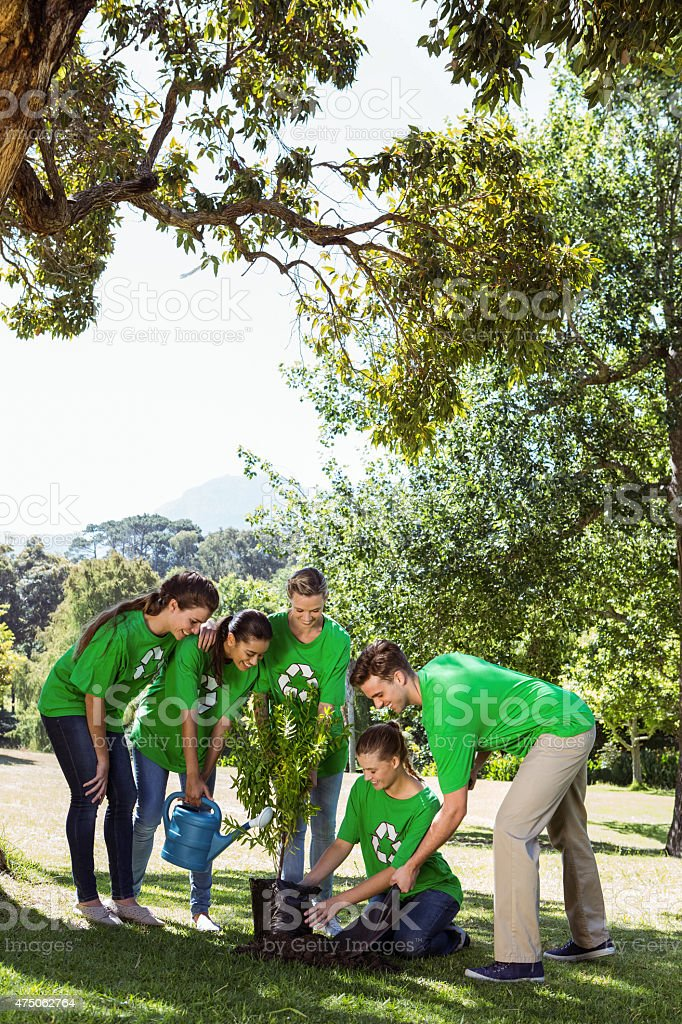 Environmental activists planting a tree in the park stock photo