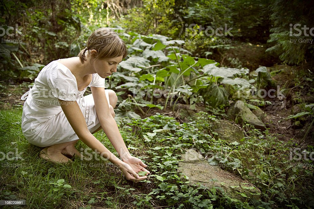 Environmental Conservation royalty-free stock photo