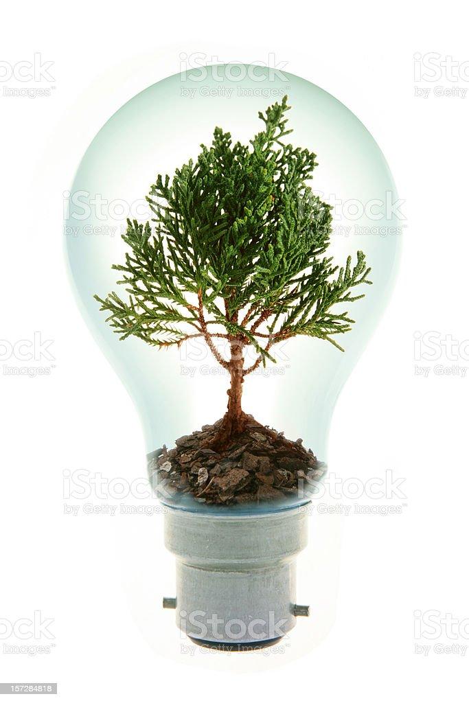 Environmental Ideas royalty-free stock photo