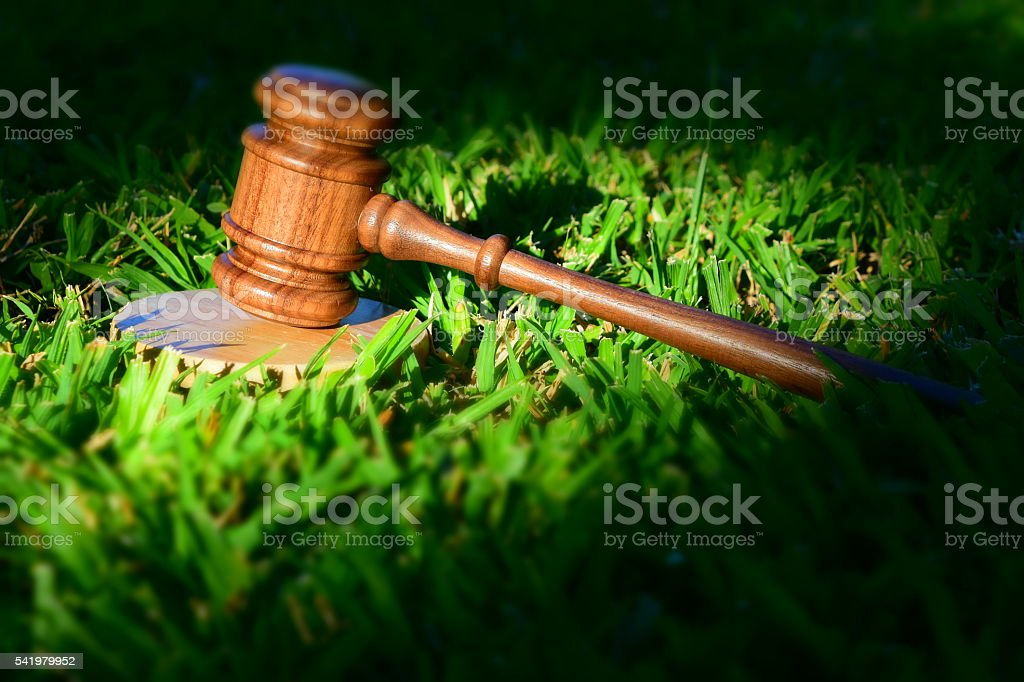 Environmental legislation stock photo