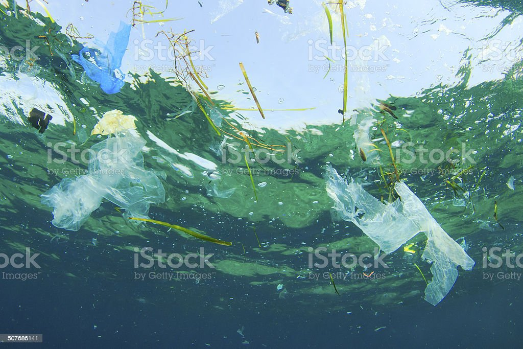 Environmental problem: Plastic bags in ocean stock photo