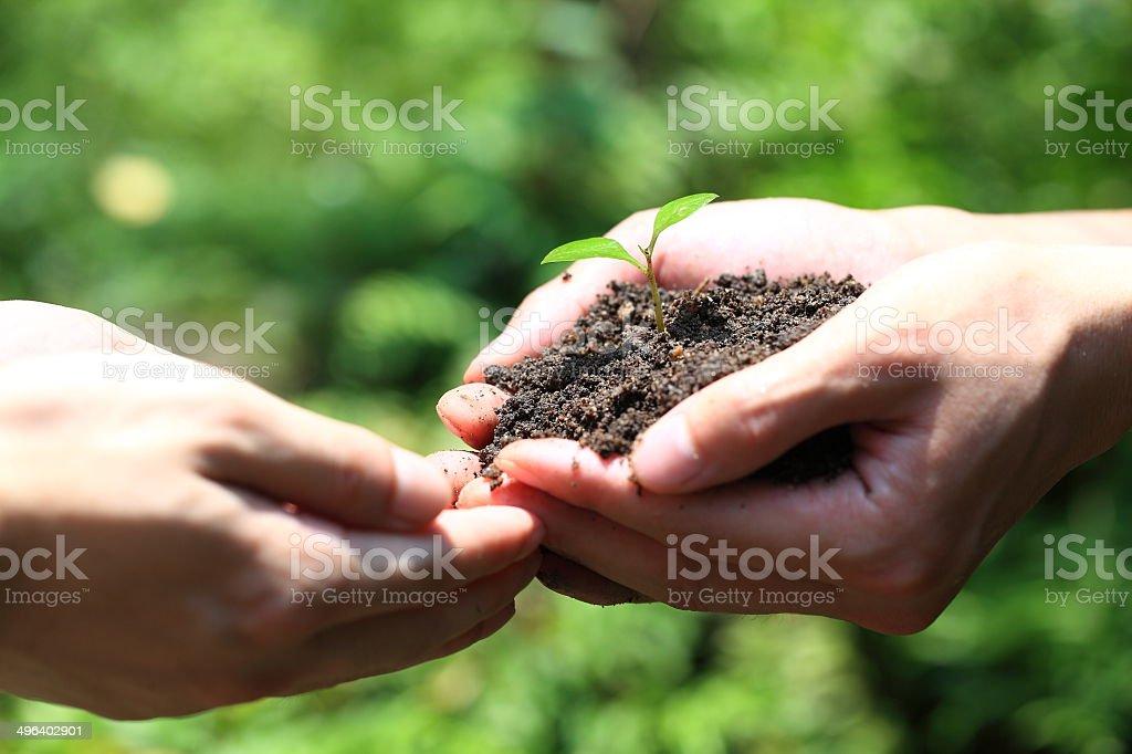 Environmental protection activities stock photo