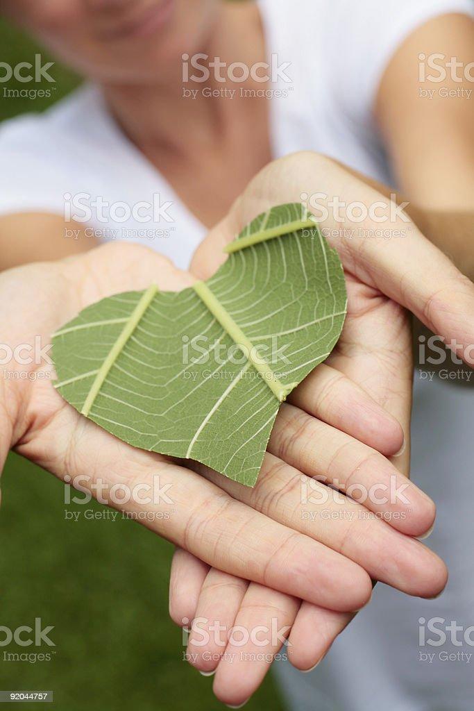 Environmentally Friendly Concept royalty-free stock photo