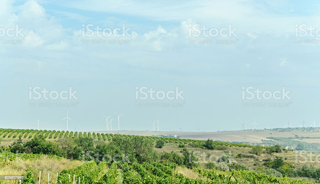 Eolian field and wind turbines farm, countryside with green hill stock photo