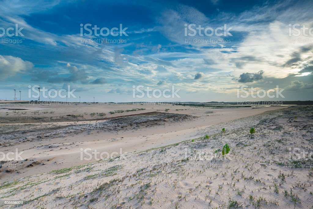 Eolic farm and dunes stock photo