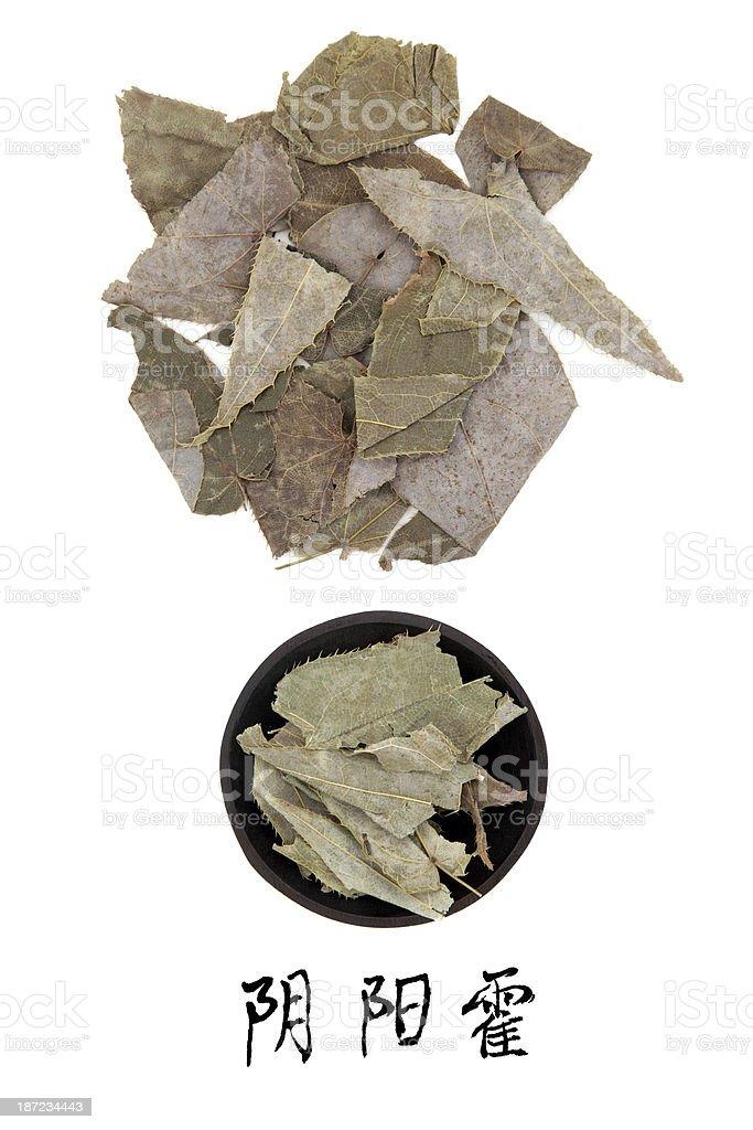 Epimedium Herb royalty-free stock photo