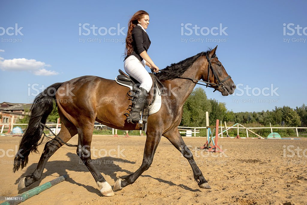 Equestrian dressage royalty-free stock photo