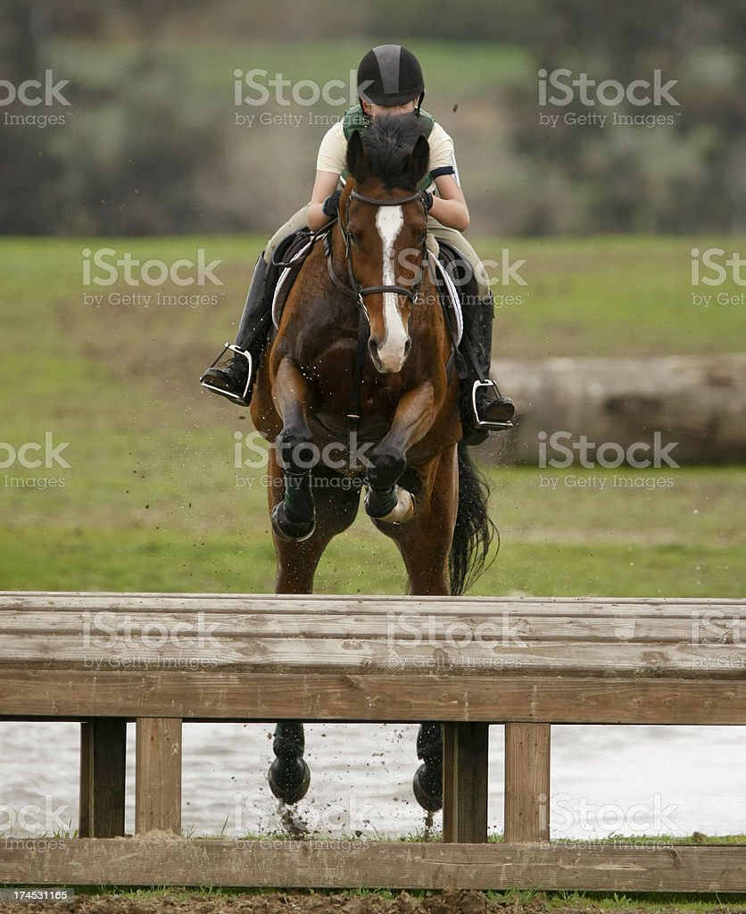 Equestrian Jump on a Cross country Coure stock photo