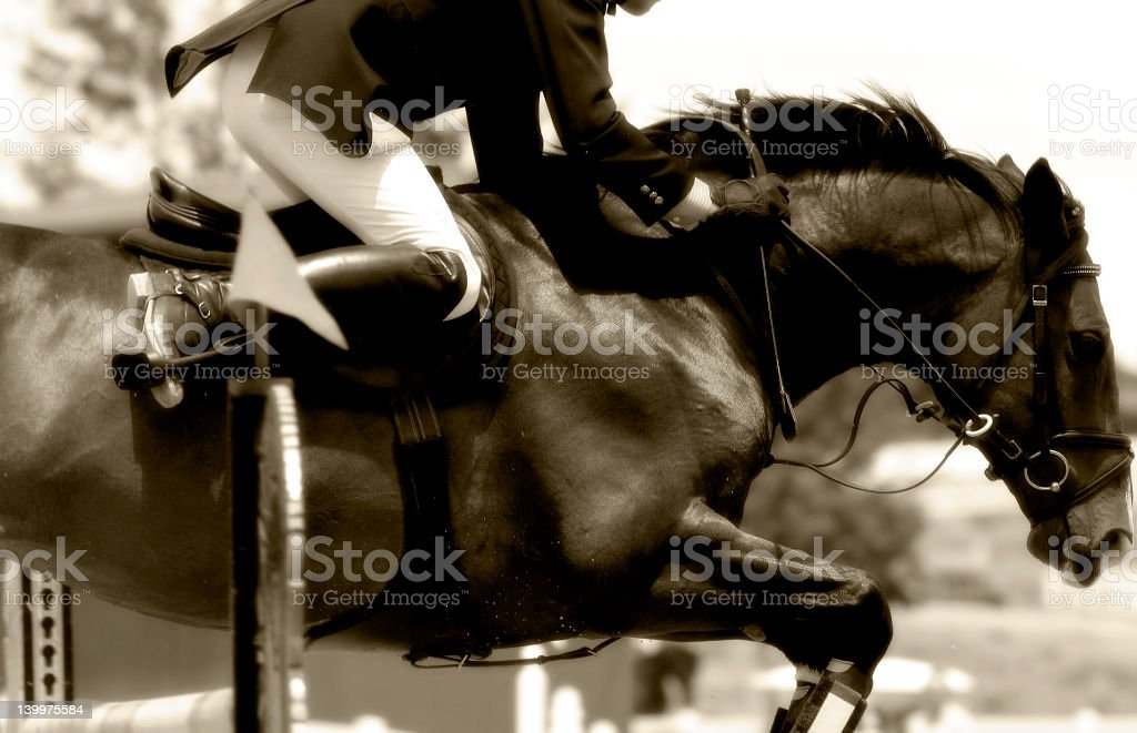 Equestrian Show Jumping Close-up  (Sepia) stock photo