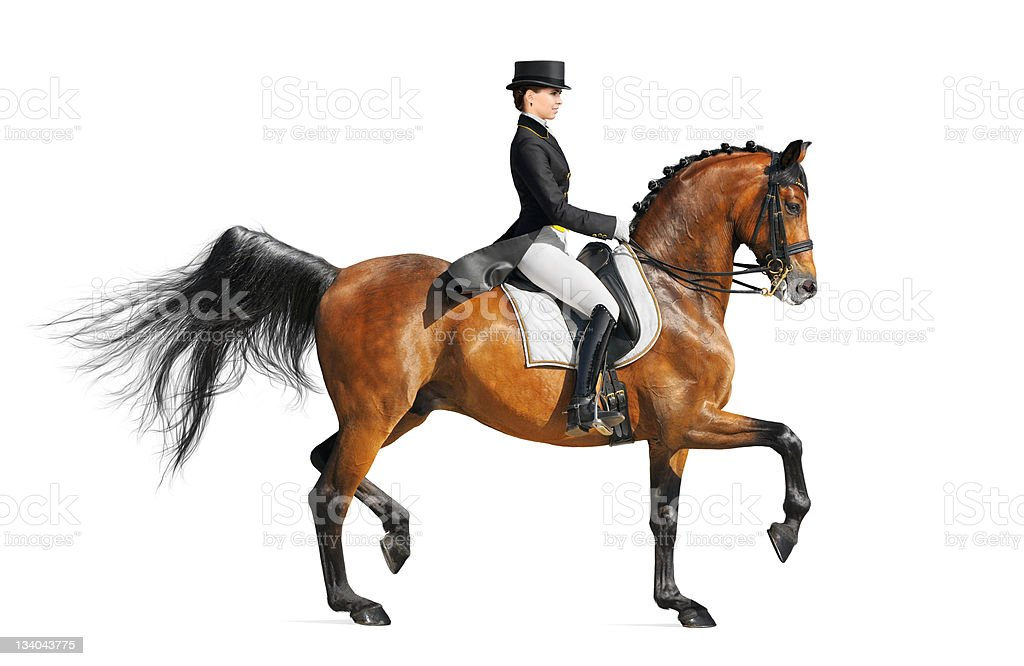 Equestrian sport - dressage stock photo