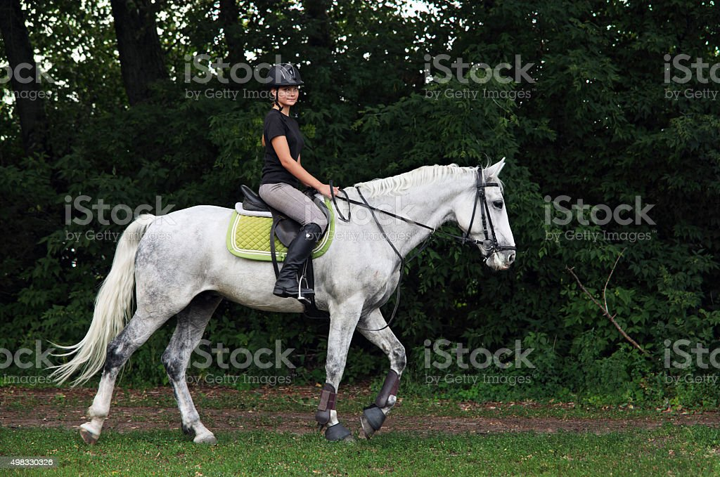 Equestrian trail riding in woods stock photo