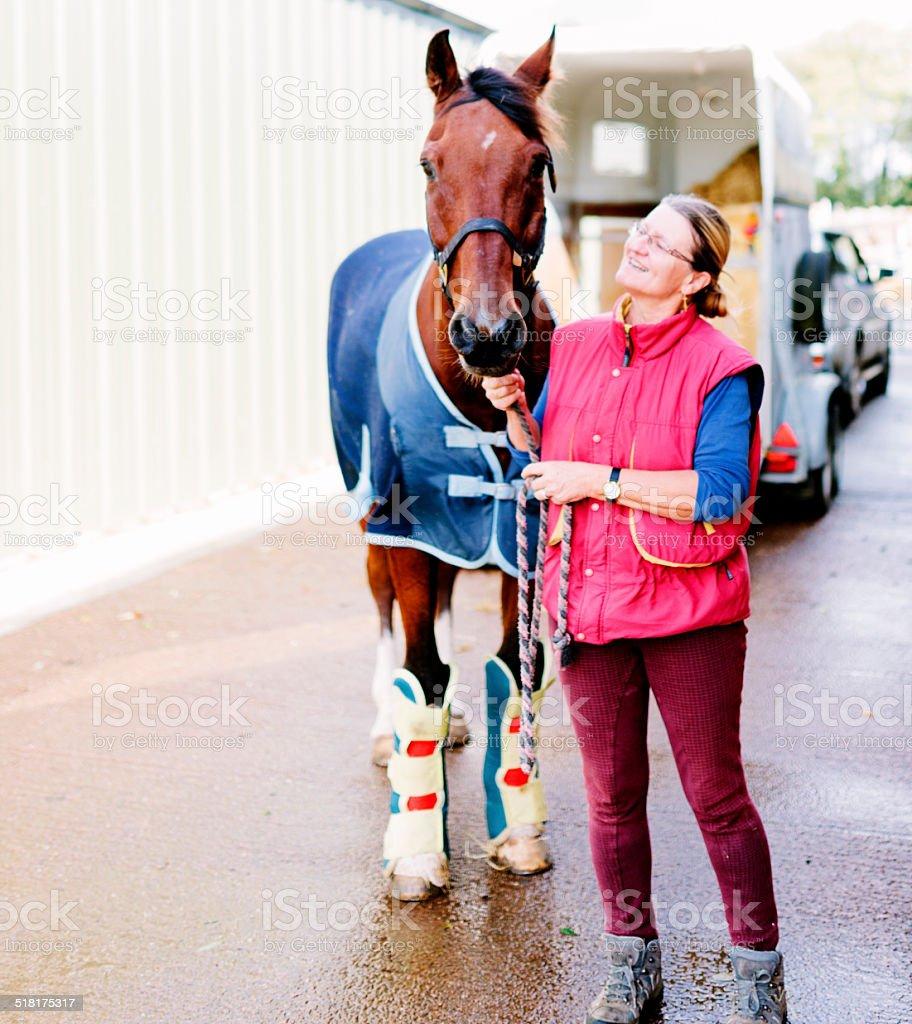 Equine Veterinary Hospital stock photo
