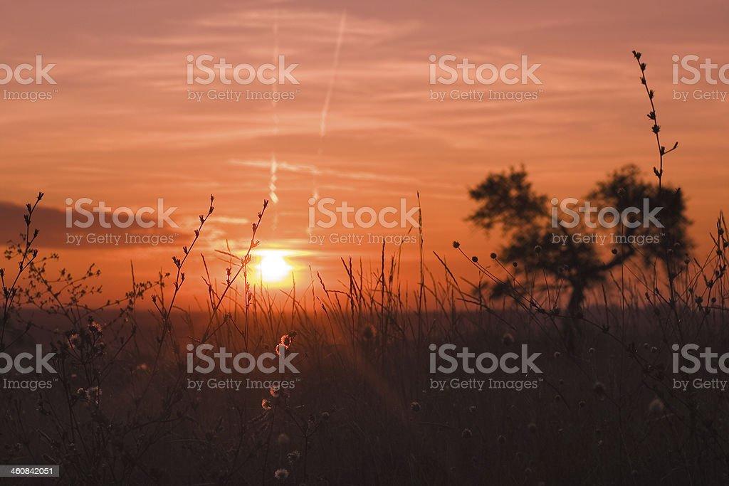 Equinox Sunset stock photo