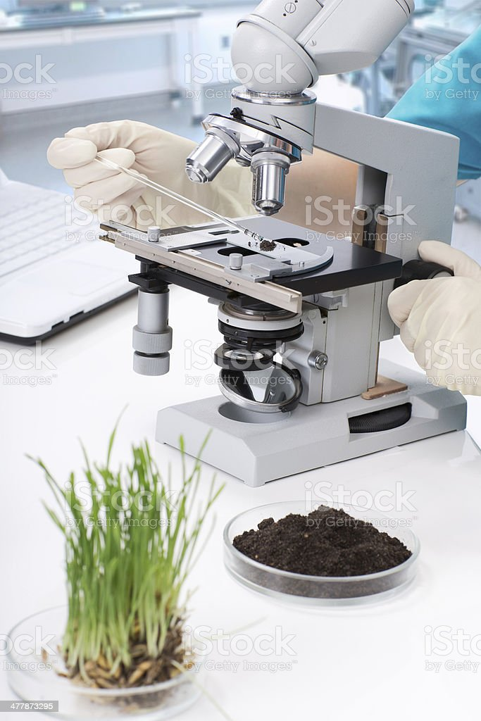 equipment and a sample of dirt in the laboratory stock photo