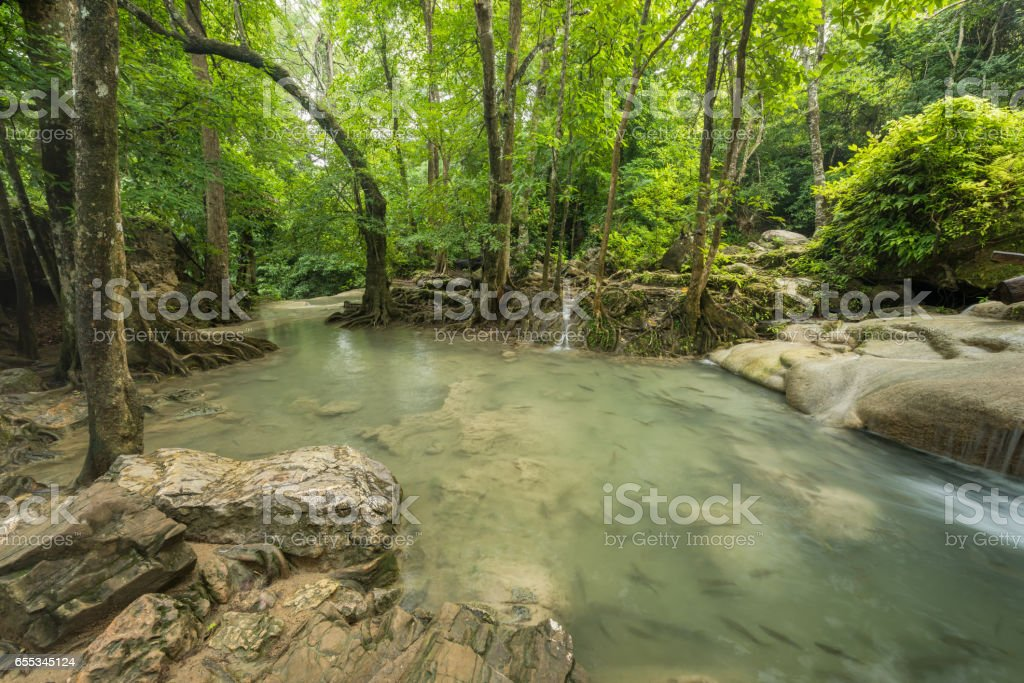 Erawan's waterfall at the evergreen forest stock photo