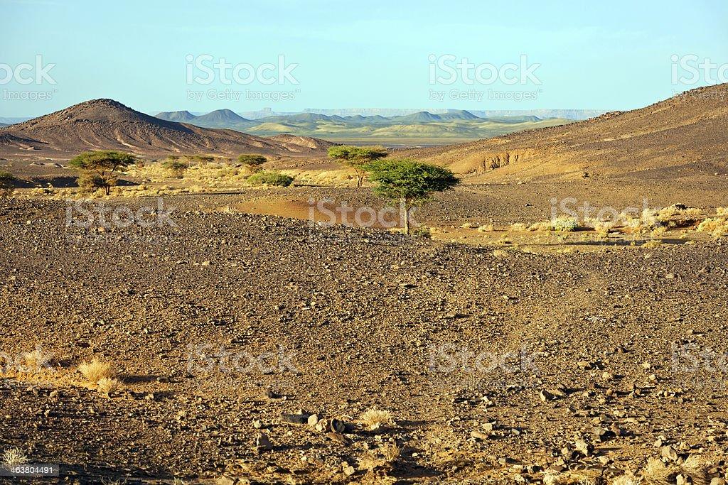 Erg Chebbi Desert, Morocco, Northern Africa royalty-free stock photo