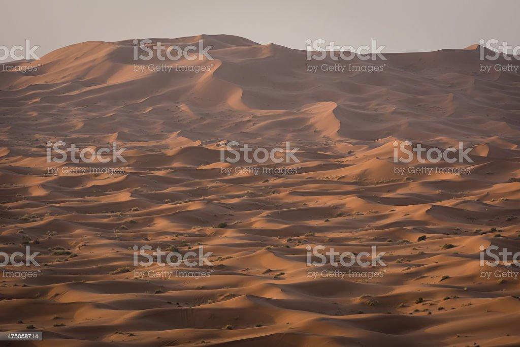 Erg Chebbi dunes in Moroccan Sahara Desert at sunrise stock photo