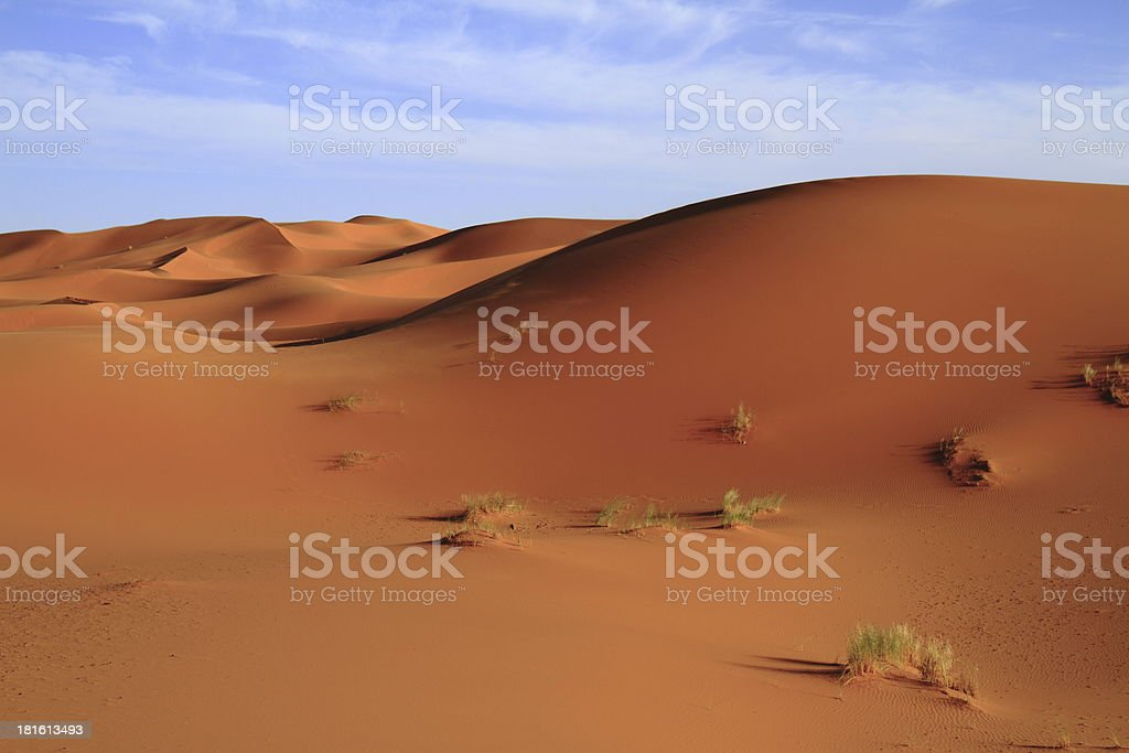 Erg Chebbi royalty-free stock photo
