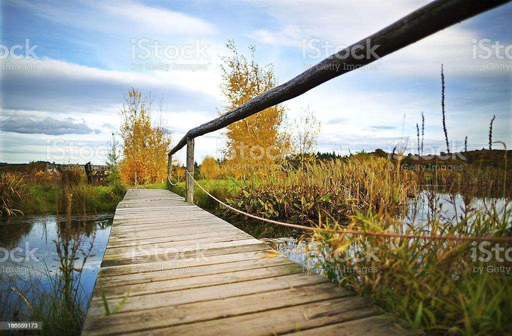 Erholung am Teich royalty-free stock photo