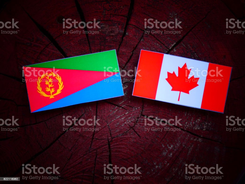 Eritrean flag with Canadian flag on a tree stump isolated stock photo