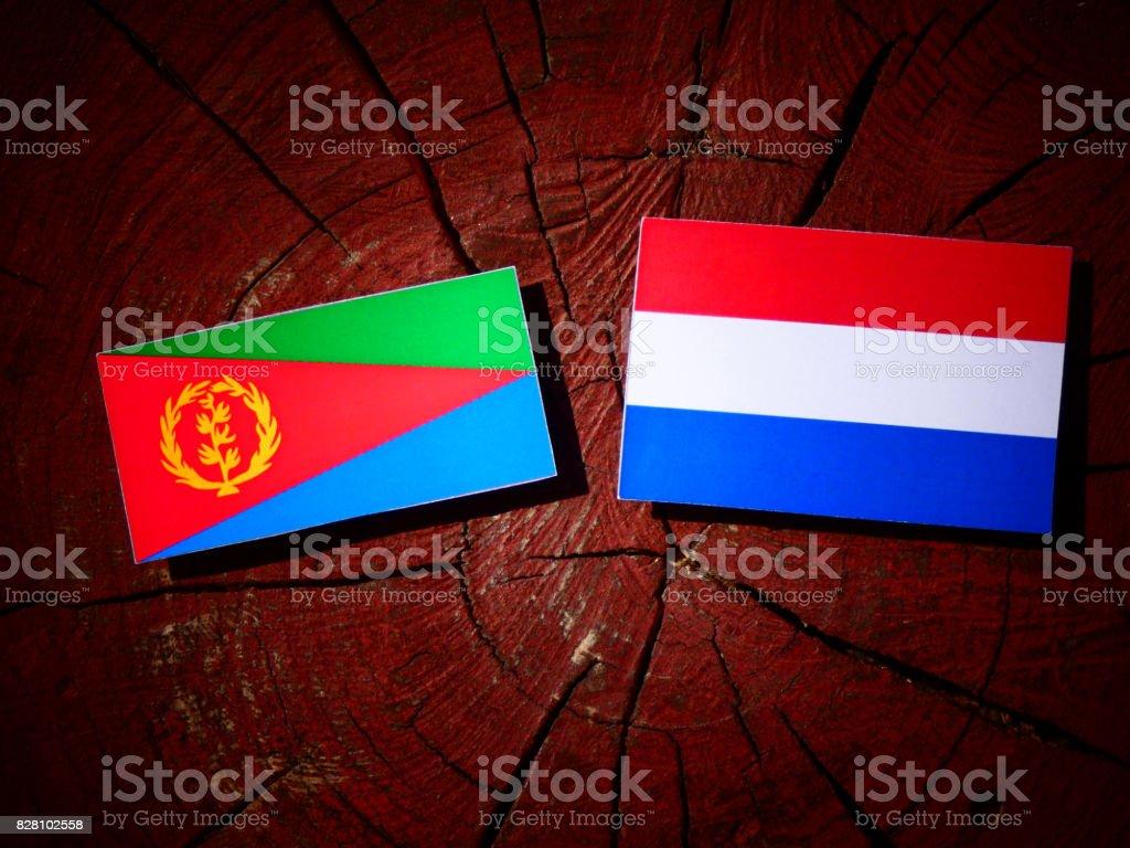 Eritrean flag with Dutch flag on a tree stump isolated stock photo