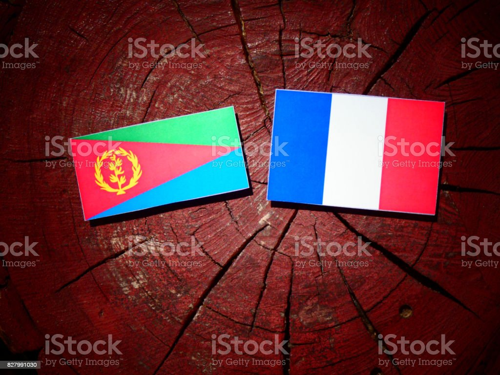 Eritrean flag with French flag on a tree stump isolated stock photo