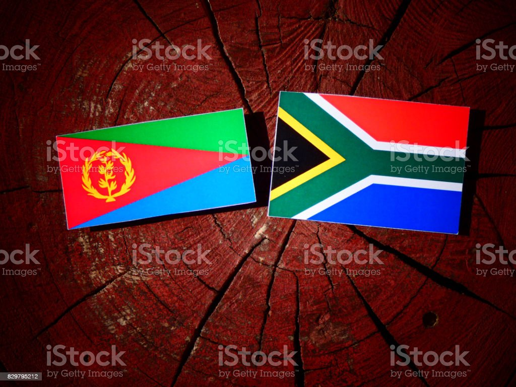 Eritrean flag with South African flag on a tree stump isolated stock photo