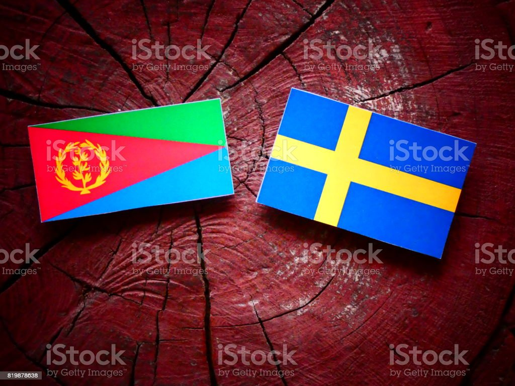 Eritrean flag with Swedish flag on a tree stump isolated stock photo