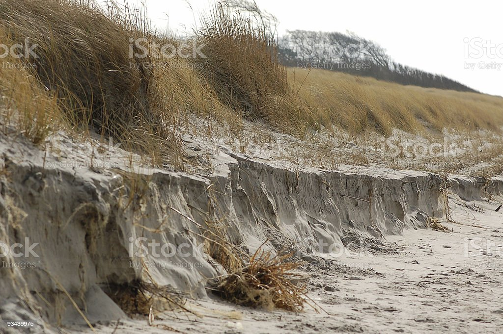 Eroded and washout of sanddunes on baltic sea stock photo