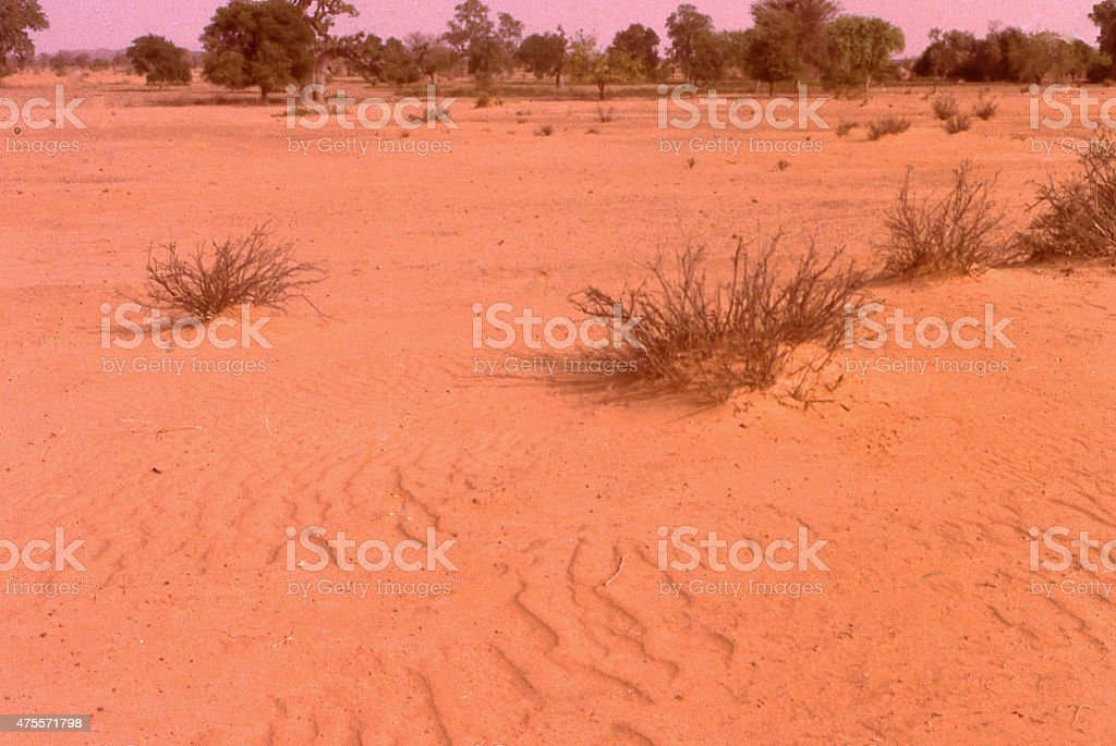 Eroded degraded soils desertification northern Sahel Burkina Faso West Africa stock photo