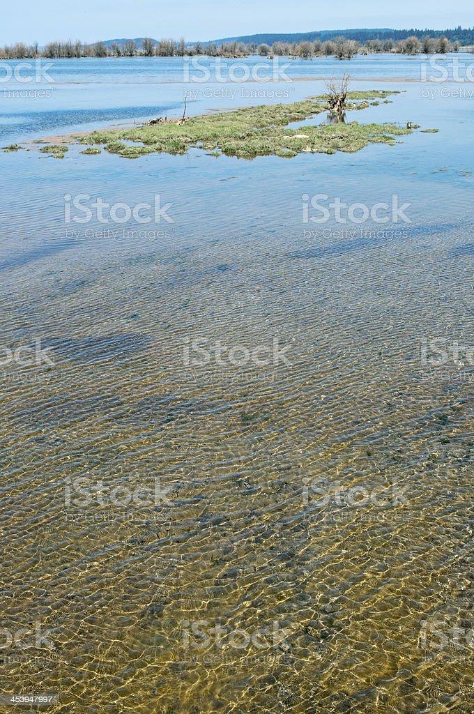 Eroding island in restored estuary of delta at Nisqually WA stock photo