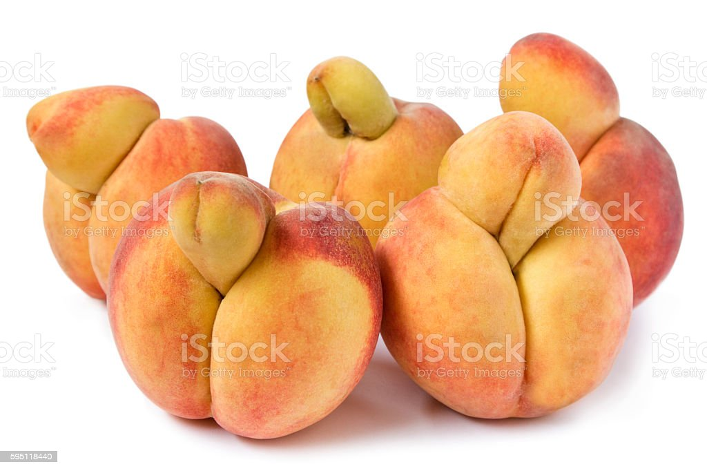 Erotic Peaches, strange growth like penises, on white stock photo