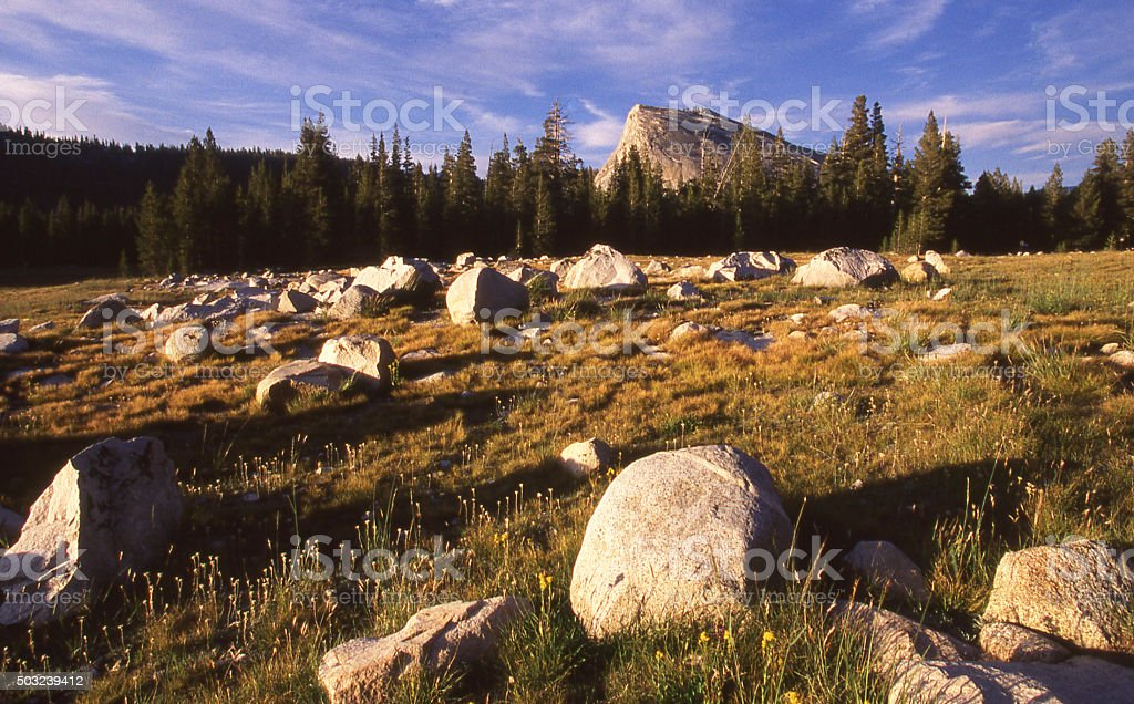 Erratic boulders glacial erosion Tuolumne Meadows Yosemite National Park California stock photo